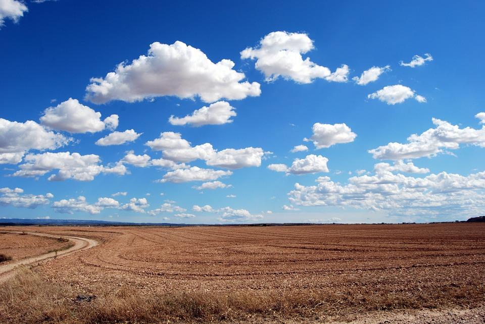 Ochrona produkcji rolniczej w ramach gospodarki przestrzennej