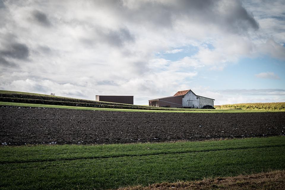 Co z Programem działań mających na celu ograniczenie odpływu azotu ze źródeł rolniczych?