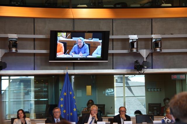PE Komisja 1