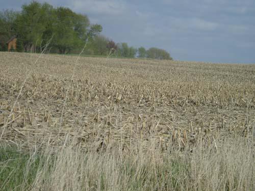 KOWR w sprawie zasad przedłużania dzierżaw