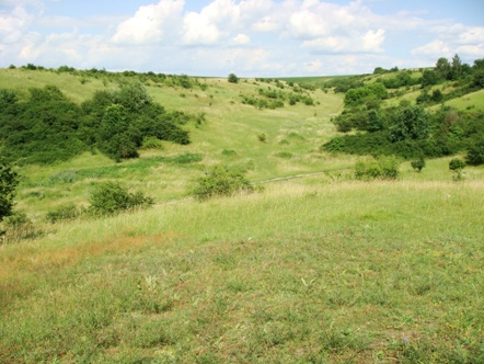 Farmy fotowoltaiczne a ład przestrzenny gminy
