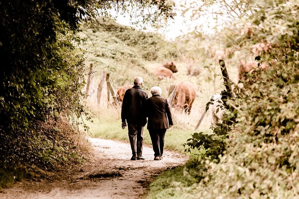 Wniosek o ułatwienie opieki nad osobami starszymi w gospodarstwach