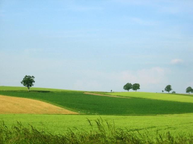 """Uwagi do zmian w """"Działaniu rolnośrodowiskowo-klimatycznym"""""""