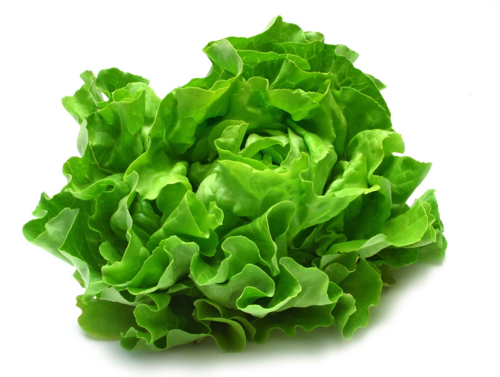 Zdjęcie do artykułu MRIRW odpowiada na wniosek KRIR dot. trudnej sytuacji producentów warzyw