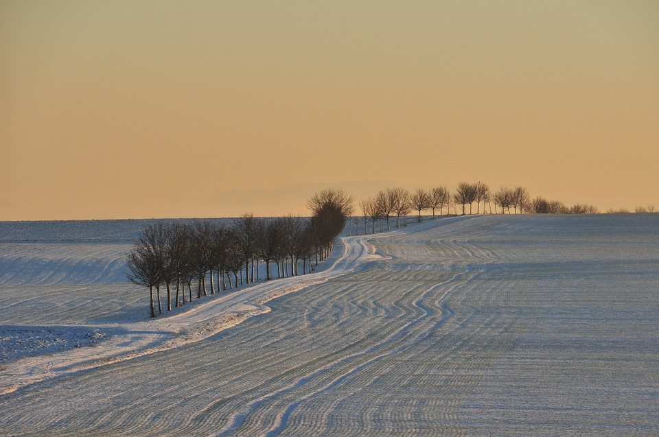 MRiRW w sprawie ubezpieczenia późnych szkód śniegowych