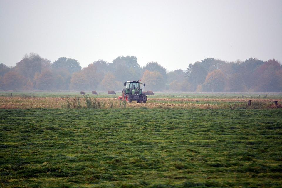 W sprawie problemów w przekraczaniu granicy polsko - litewskiej w celu prowadzenia prac w gospodarstwach rolnych
