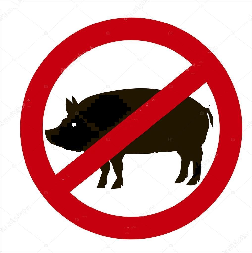ASF zasady przemieszczania świń wytyczne GIW