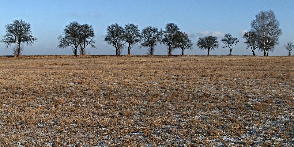Informacja nt. zmiany sposobu szacowania strat w uprawach rolnych